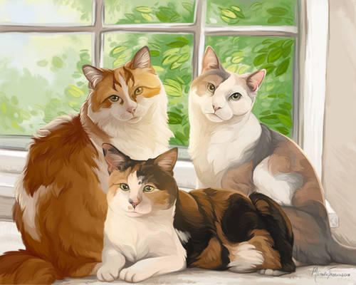 Window Cats Small