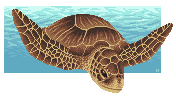 June 2014 - Pixel Green Sea Turtle by SmiteTheeWithApples