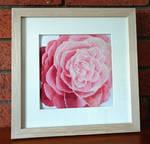 Camellia Flower Cross Stitch