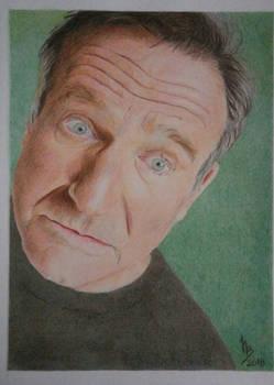 Robin Williams (Polichromatic Pencils) 2018