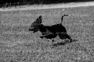 Tyson Poetry by MushaMurron