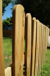 Fence by MushaMurron