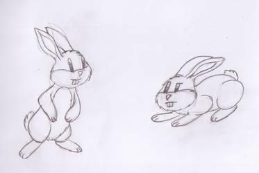 Doodle: Bunnies