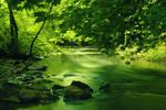 River stock