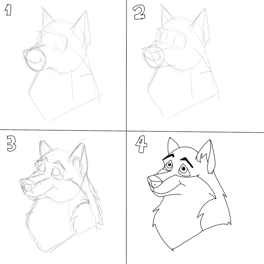 How To Draw A Wolf's Head, Step By Step By Shadowdhusky