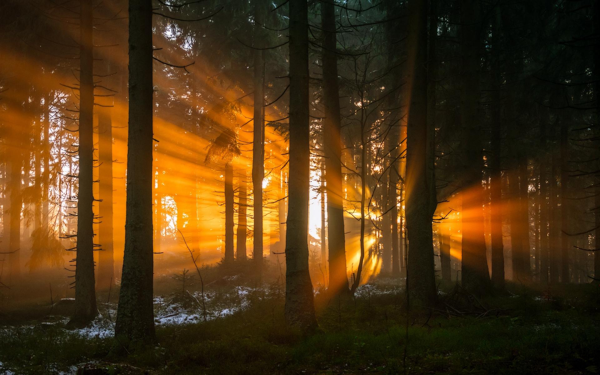 Last flare of sunlight by EmmmBeee