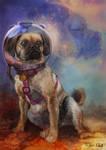 Space Puggle