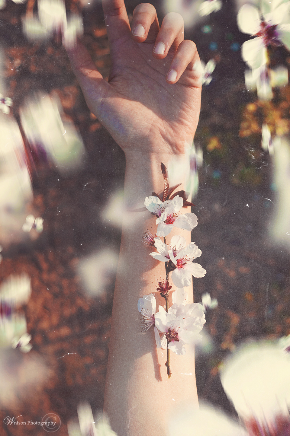It's Spring in your veins by Wnison