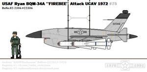 Ryan BQM-34A ''Firebee''