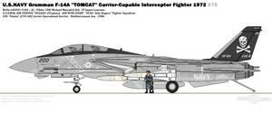 Grumman F-14A ''Tomcat'' (VF-84)
