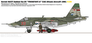 Sukhoi Su-25 ''Frogfoot-A''