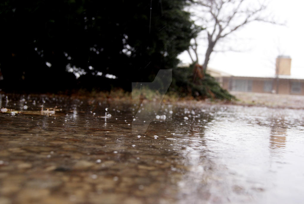 Just a few sleet droplets by Nothingness-Queen