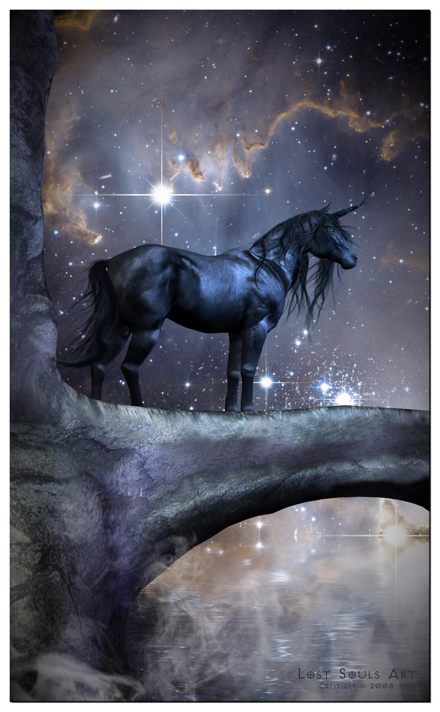 Chiot craintif/peureux - Page 7 The_Black_Unicorn_by_LostSoulsArt
