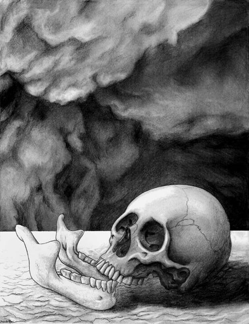 Bones From Two Skeletons