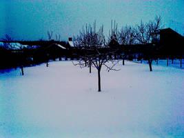 snow in the garden by bolyhoska