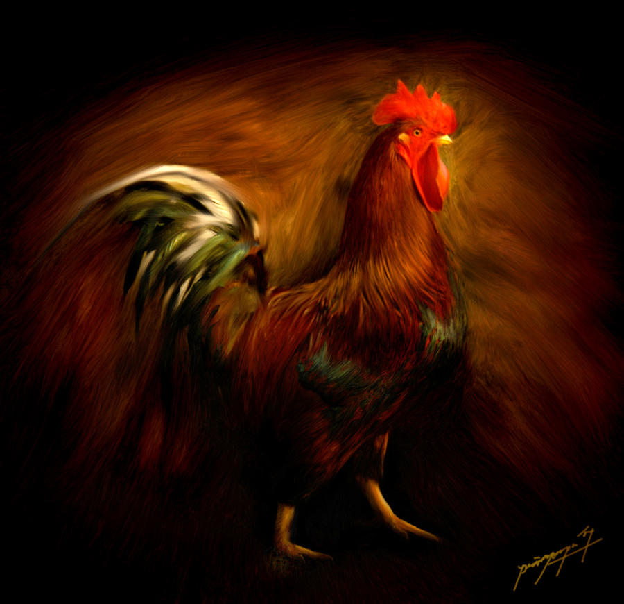 ayam jago indonesia by primayoga on DeviantArt