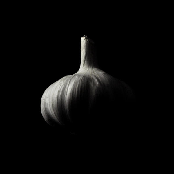 garlic by Jajoroma