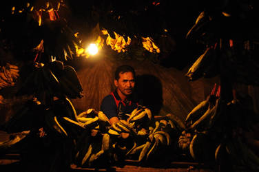 Penjual pisang by mahesanugroho