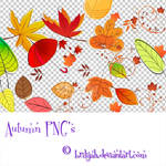 Autumn PNG's