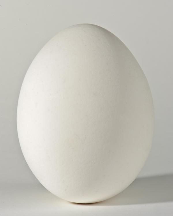 how to buy egg whites