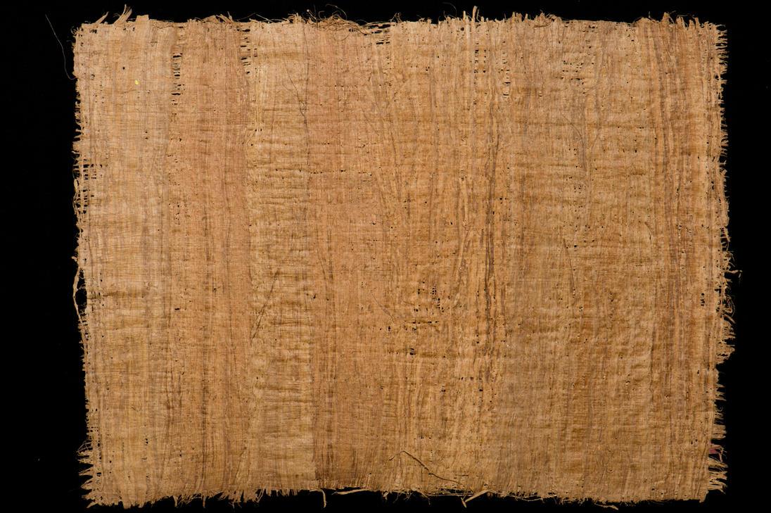 Papyrus Paper Papyrus by HenrikHolmb...