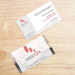 Business Cards MeritDPF
