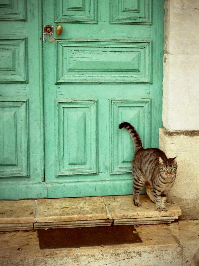 The Turquoise Door By Anneclaires ...