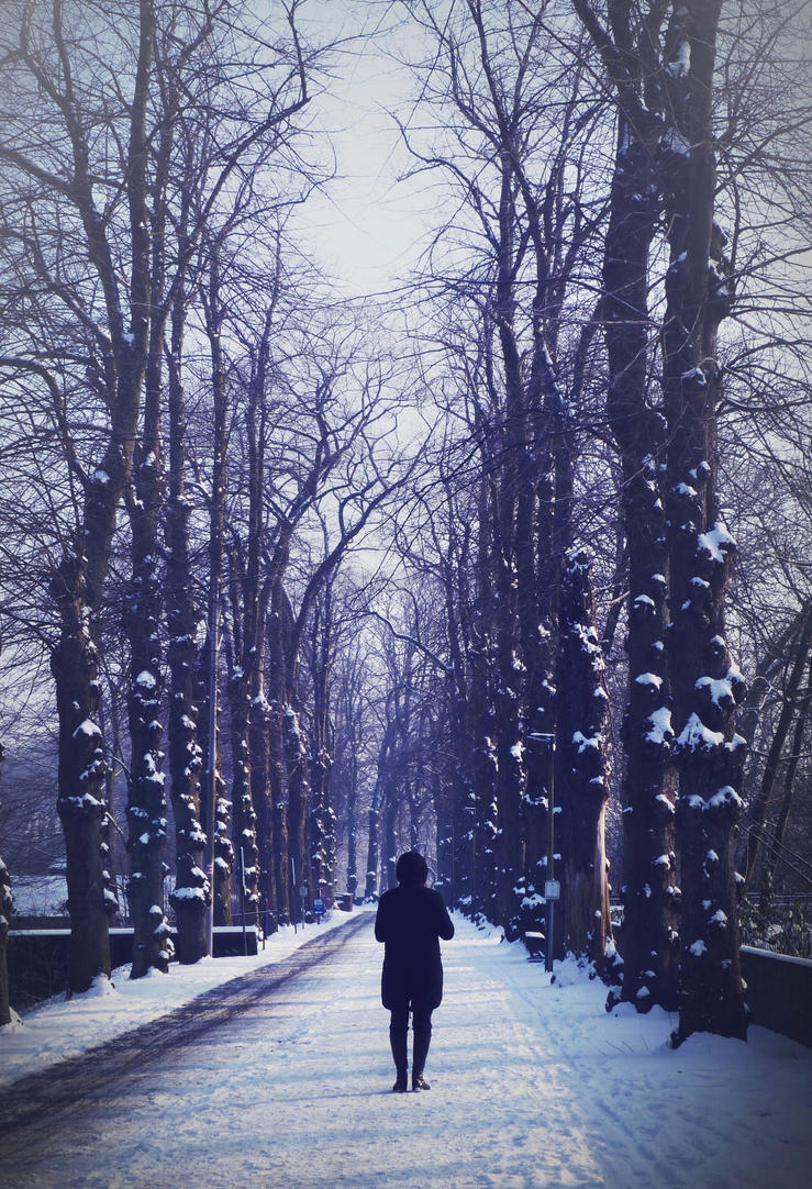 Snowy Alley by anneclaires
