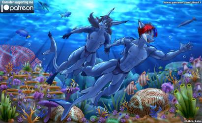 Sharkification Tour