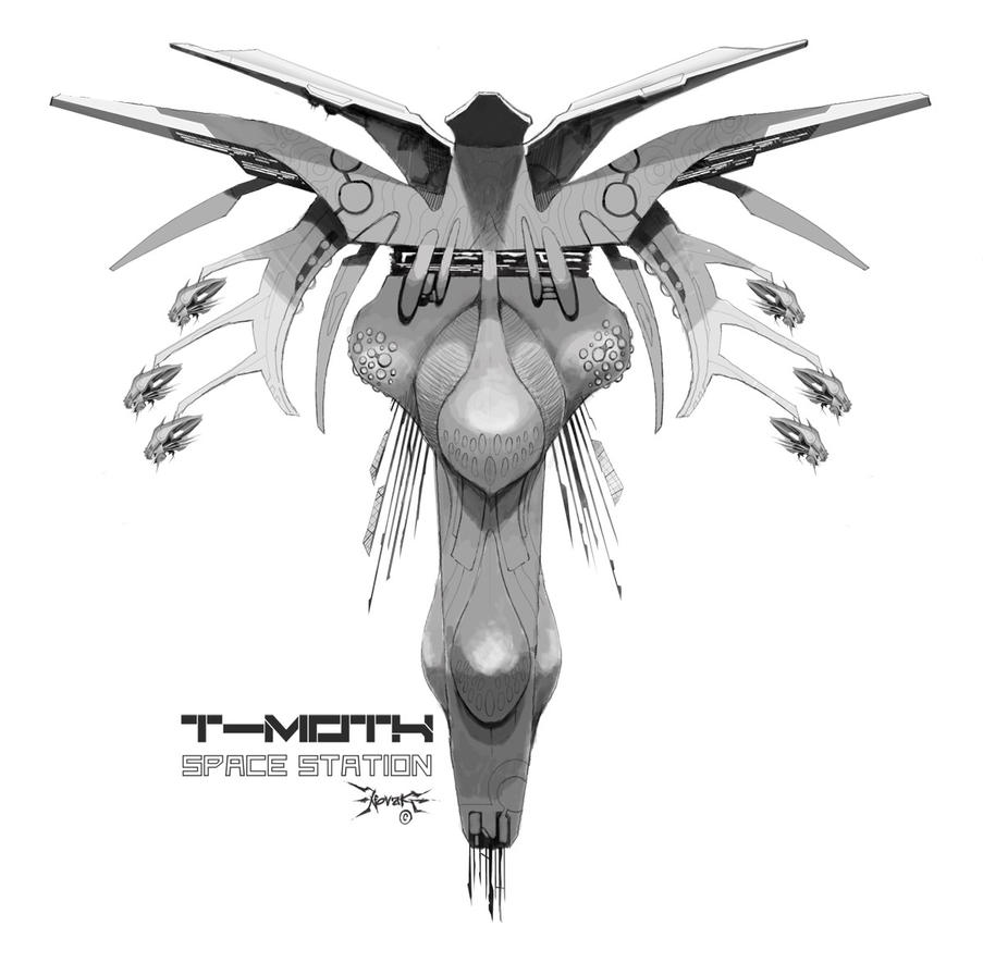 T-moth 01 by koalapaul