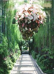 Romance Alley by ciseaux