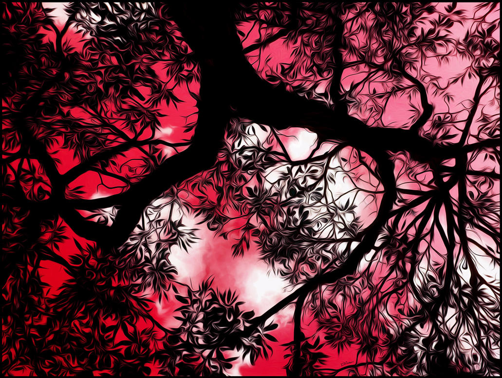 Branches of the sky by Ventapane