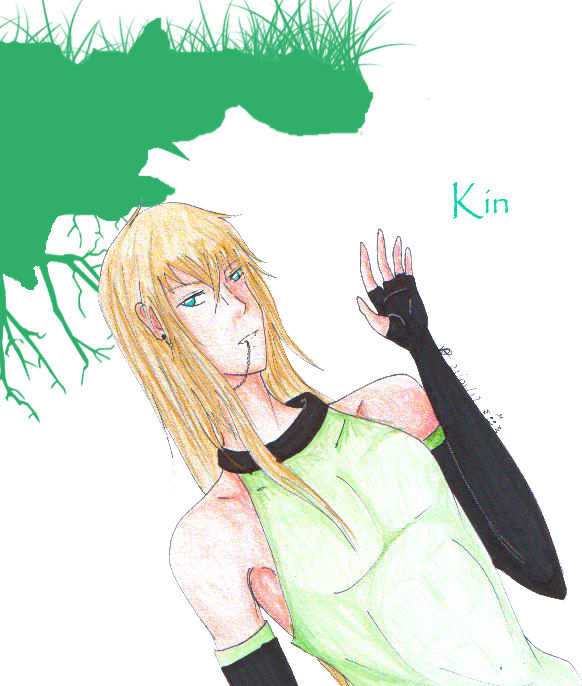 Kin x3 by Koe77