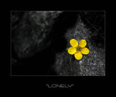 Lonely by JVre