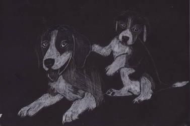 .::Beagles-OLD::. by a7xrja