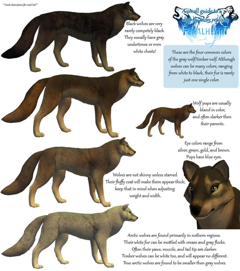 Guide to Realistic Wolves in FeralHeart (w/ mods!) by Mara-Elle on ...