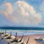 Folly Beach Sand Dunes