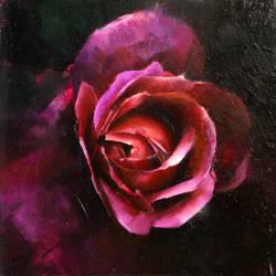 Biltmore Rose 2