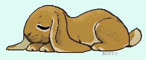 English Lop Snooze by ForgottenAmnesty