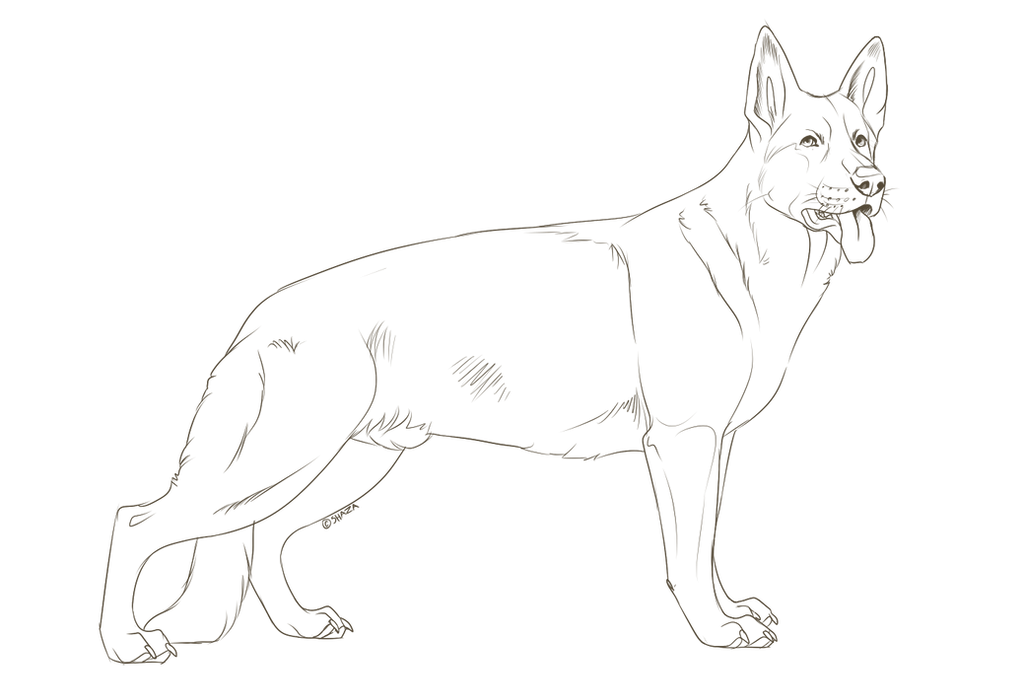 Rusty Spotted Cat Coloring Pages