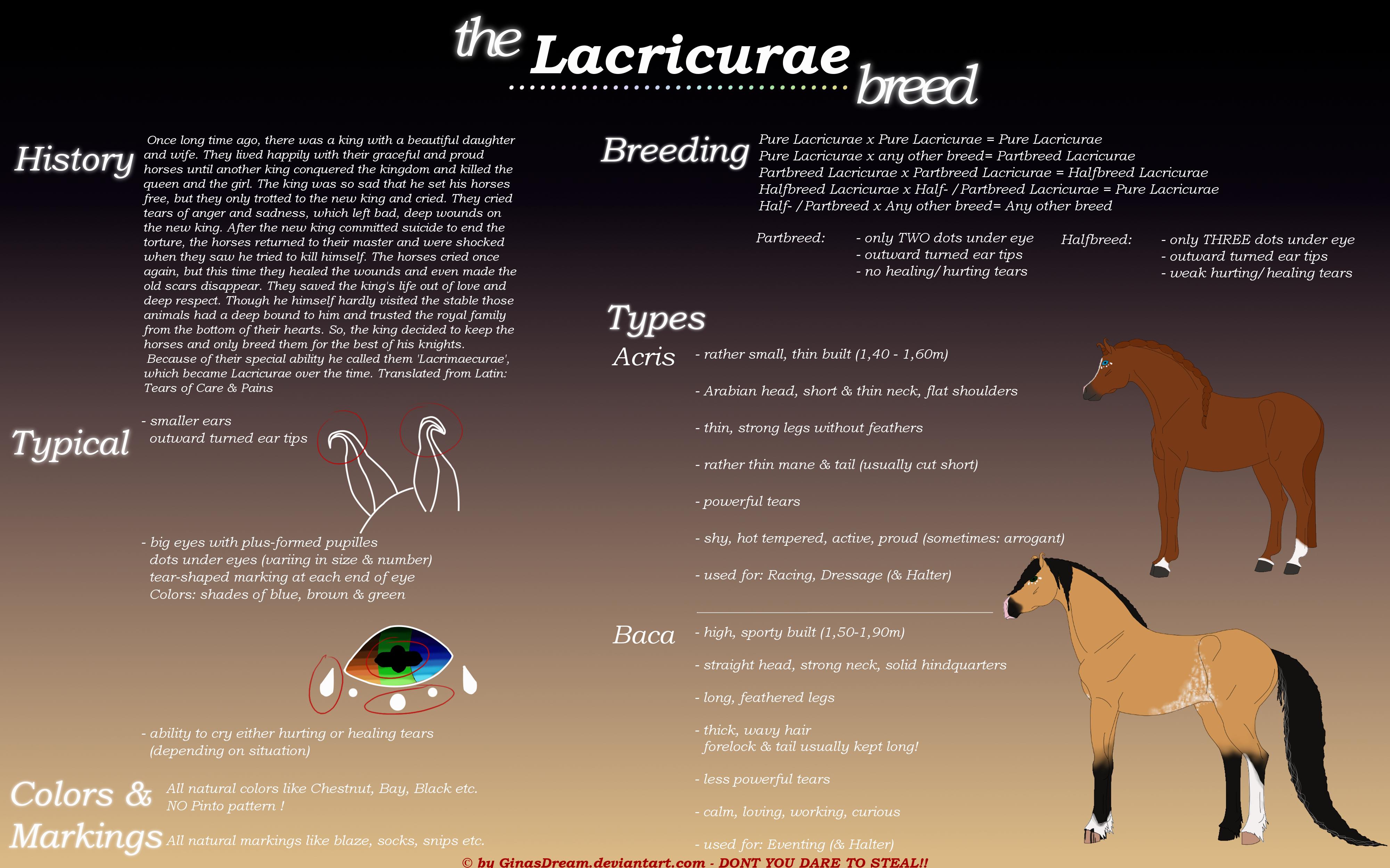 Breedsheet: Lacricurae by GinasDream
