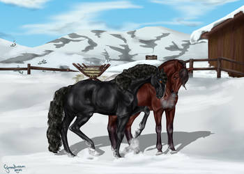 Mary and the Lead Mare