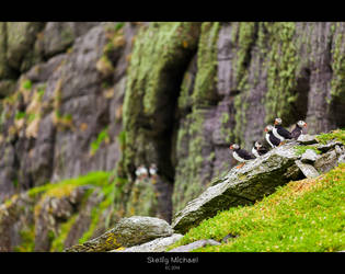 The Watchers by oggie85