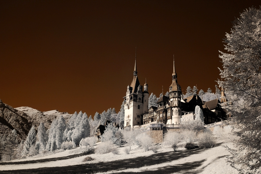 peles castle - infrared by Konczey-Zsolt