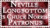 Chuck Norris' Patronus by PunkNarumi