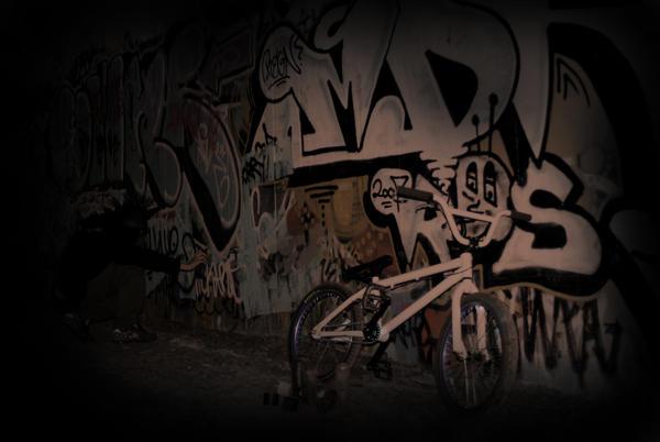 animal bmx wallpaper - photo #3