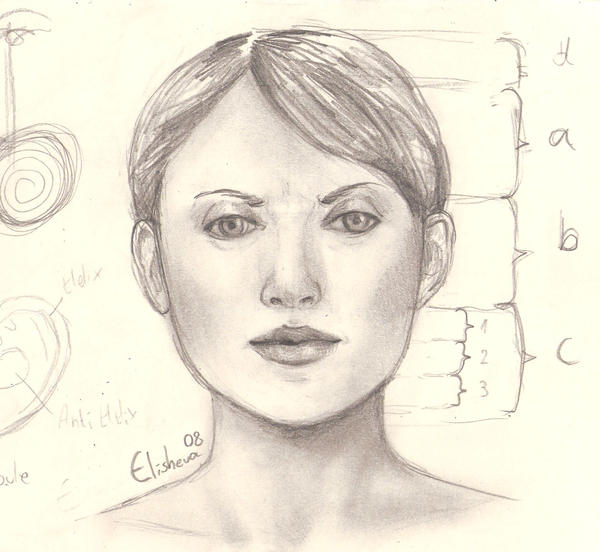 Woman Face Sketch Stock Images, Royalty-Free Images ...