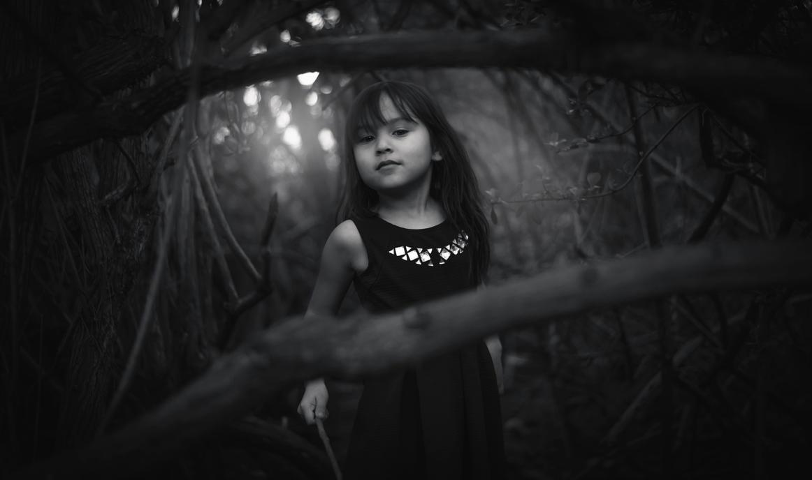 Dark Wood Mystic by InTrepidONE