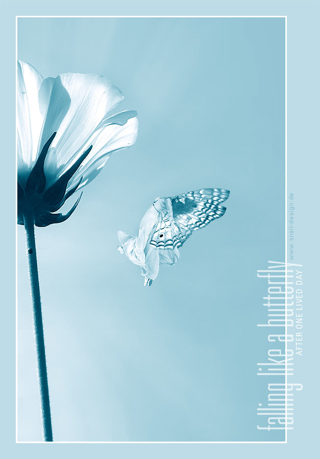 falling like a butterfly by diesnail
