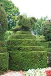 topiary9